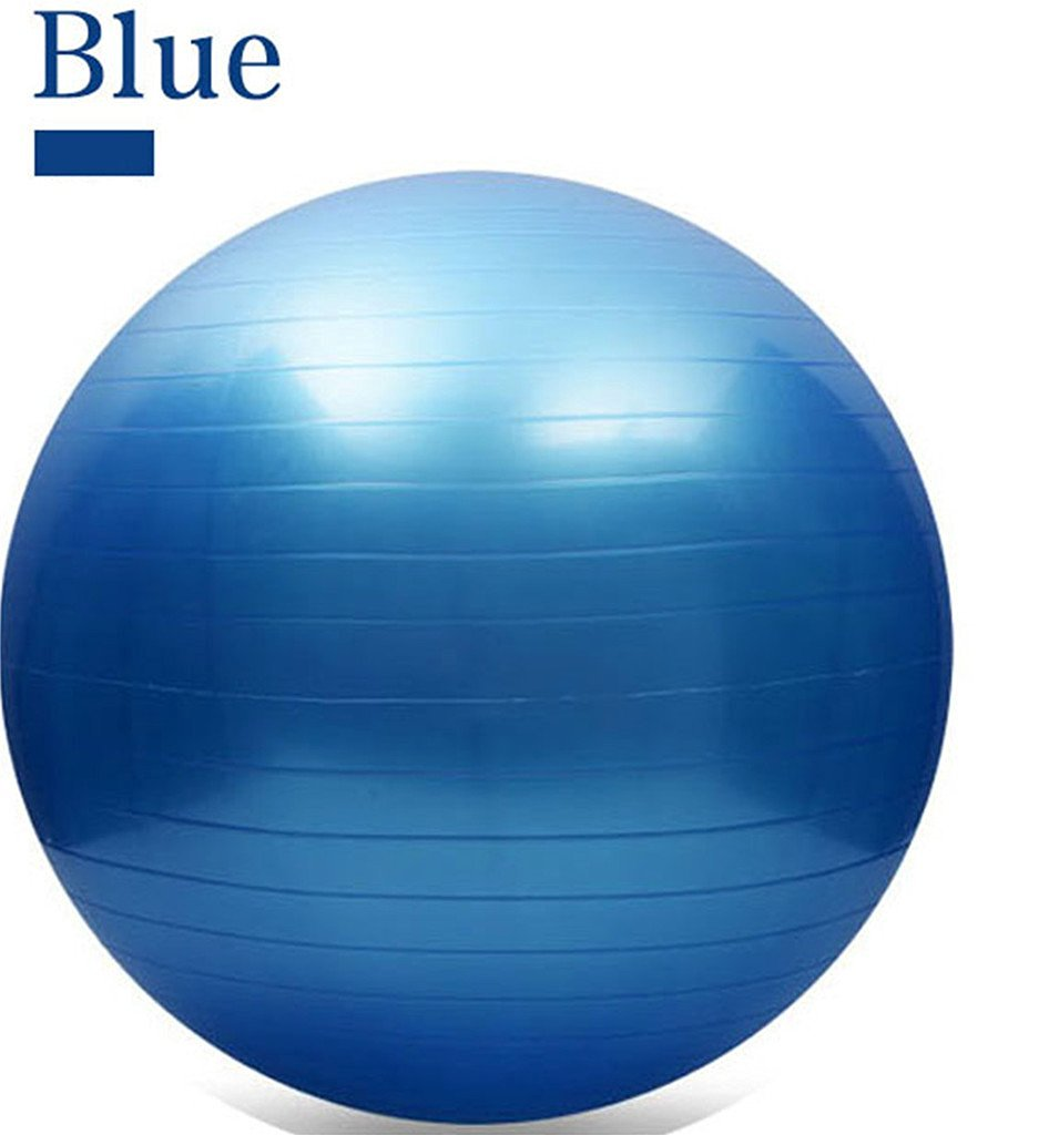 65CM Gym Fitness Ball, L&H Exercise Pilates Balance Swiss Yoga Gym Fitness Ball Aerobic Abdominal Aerobic Abdominal Static Strength Exercise Stability Ball (Blue)