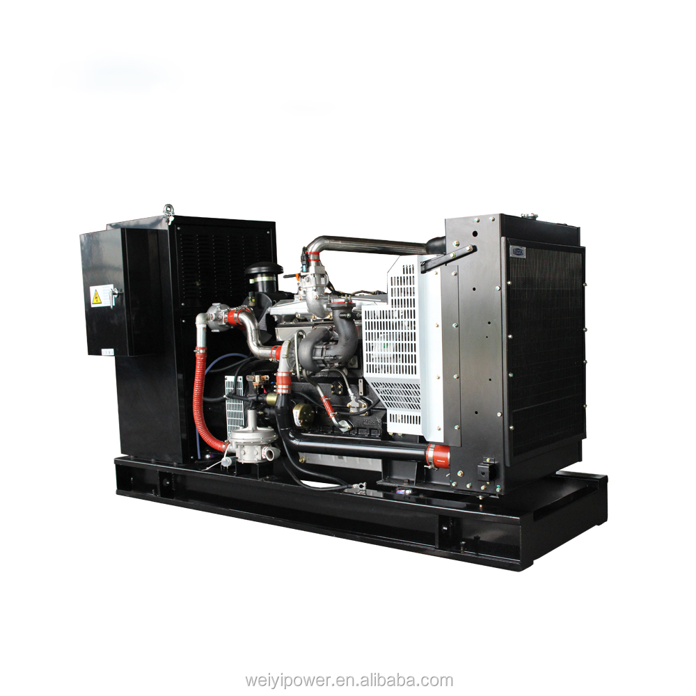 40Kw small natural gas engine generator set