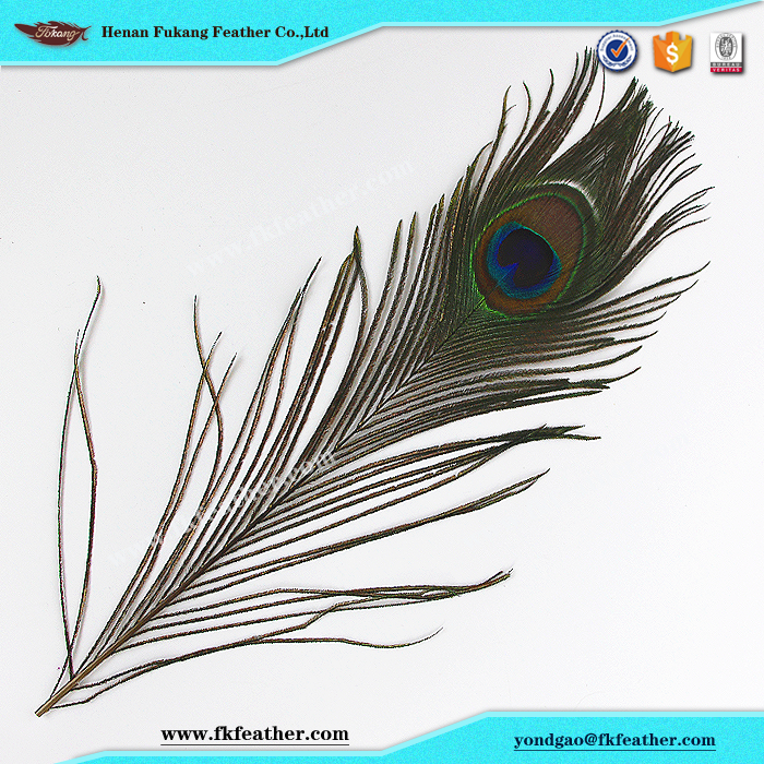 Natural Artificial Peacock Feathers For Mask Decoration