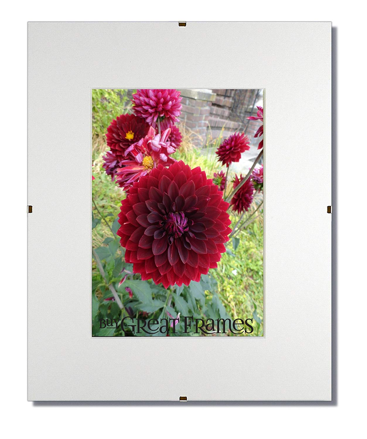 c896ef6dc2 Get Quotations · Set of 3 - 11x14 Glass and Clip Frames with Single White  Mats for 8.5x11