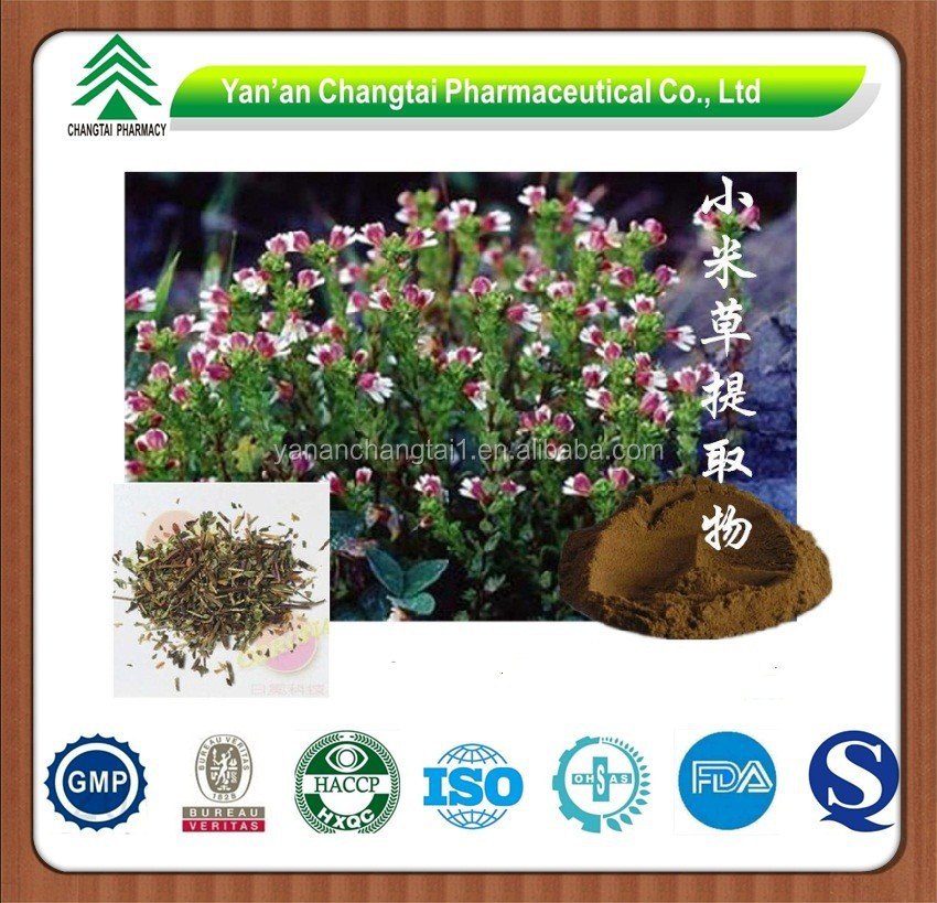GMP Factory Supply 100% Pure Natural Eyebright Extract Powder