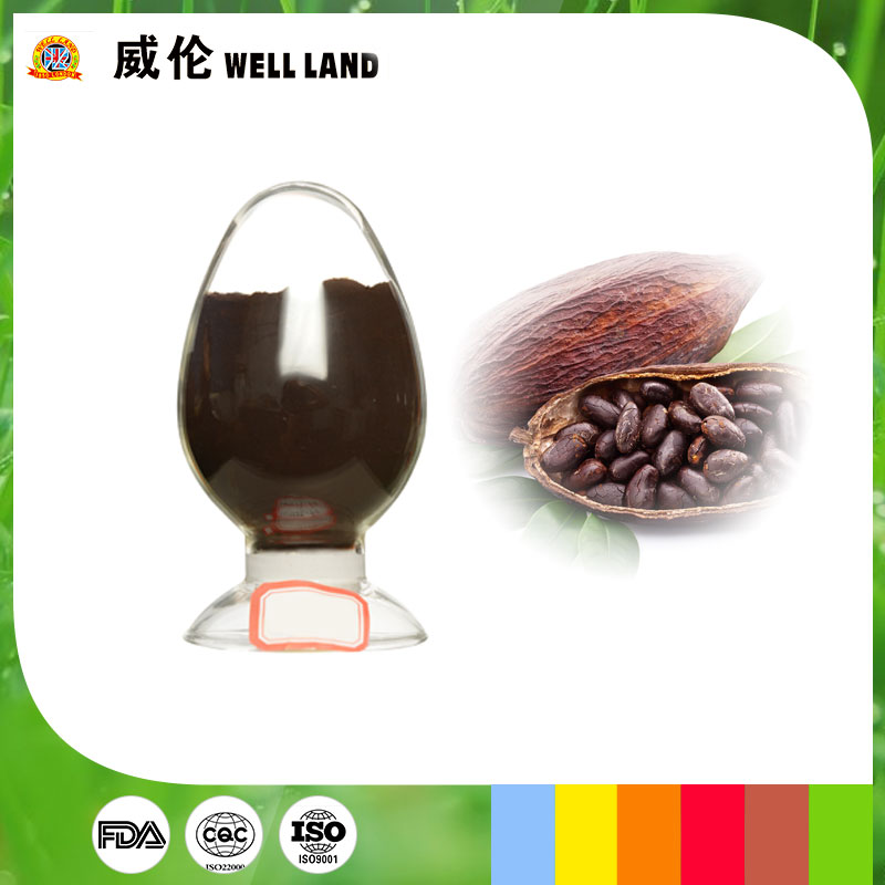 Water soluble fine powder cacao powder food pigment