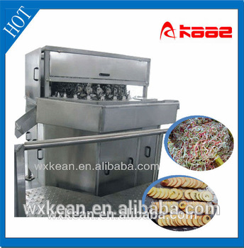 Apple peeling/de-coring/ slicing machine