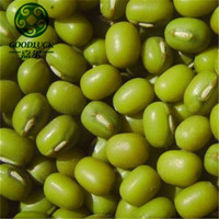 China Supplier Hand Sorted Dry Green Mung beans and Peas in Dubai