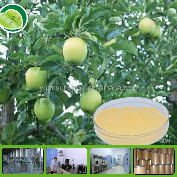 100% Natural Apple Polyphenols Extract