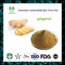 Free Samples 1% gingerols with low price