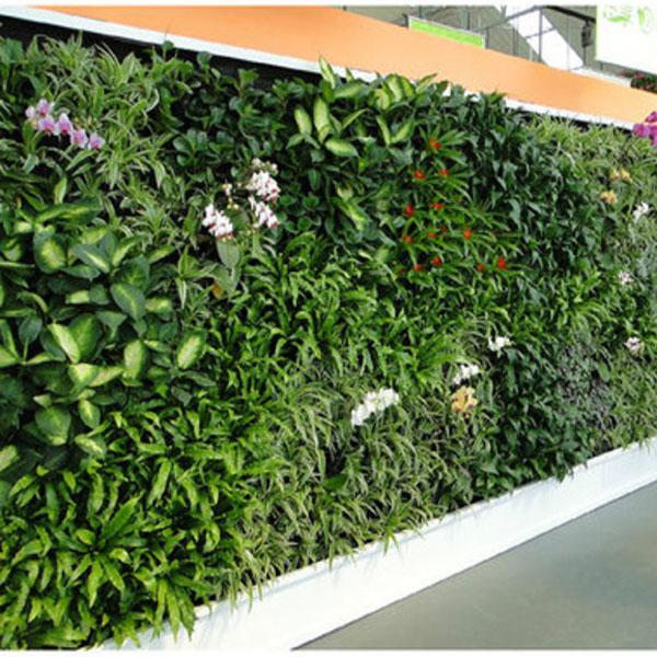 Gazon artificiel d coration murale mousse artificielle - Tapis herbe artificielle ...