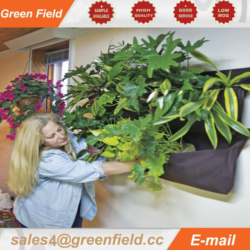 Manufacturer Hydroponic Wall Garden Hydroponic Wall