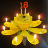 charming beautiful birthday music roating candle put in cake on party
