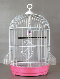 high quality New Round Bird Cage Pagoda Finch Canary bird cage pink