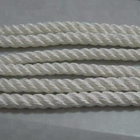 high quality Packaging Rope nylon rope