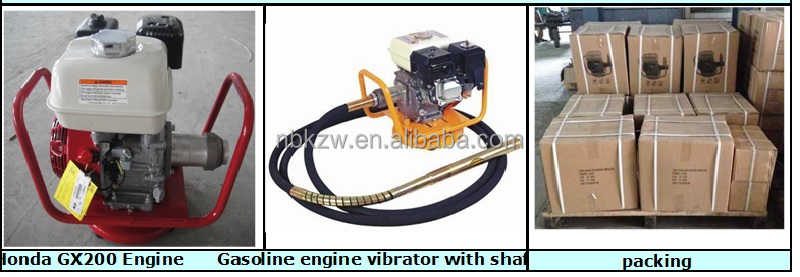 Professional Robin Gasoline concrete vibrator with EY20 5.0HP engine
