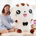 Ao Lunxi 28cm plush doll Cute totoro plush Happy Face Big Cat Plush Doll Doll Creative