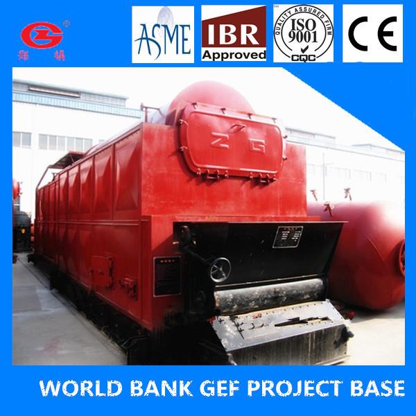 Dzl 6t 1.6mpa Chain Grate Coal Fired Steam Boiler