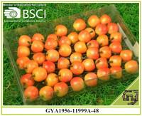 Artificial fake plastic fruit Apples kitchen home decorations