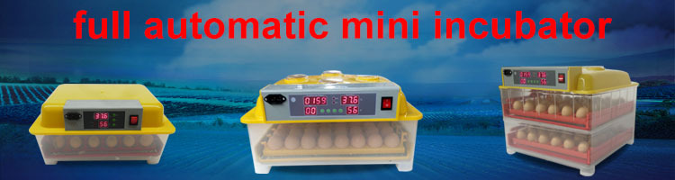 Ce Approved Wq-112 Full Automatic Egg Incubator Price 112 Eggs ...