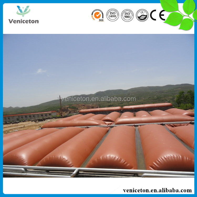Veniceton EGSB anaerobic digester biogas reactor for China use
