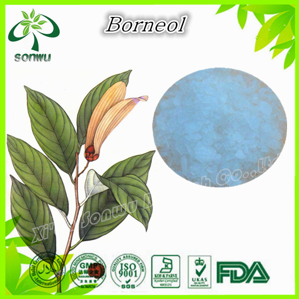 Natural borneol plant extract