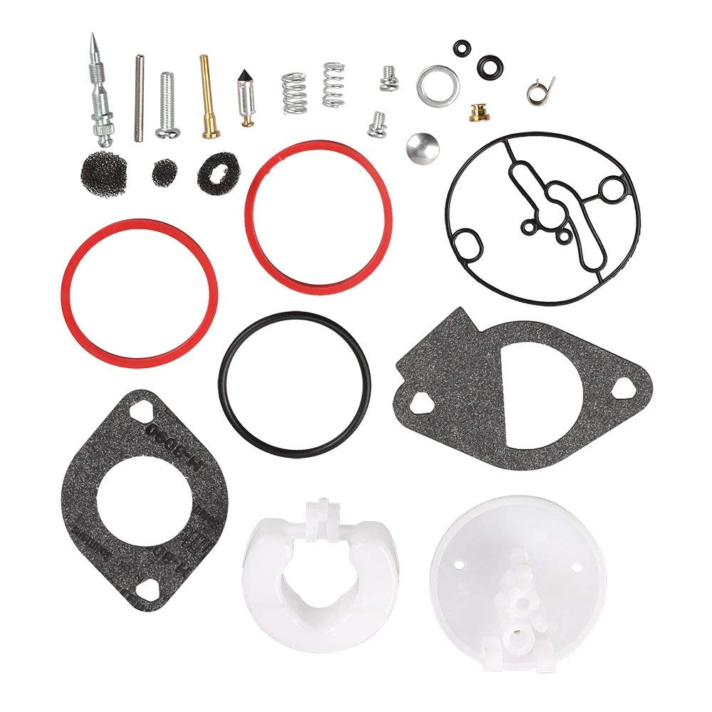 Carburetor Rebuild Kit for Briggs & Stratton 796184 Master Overhaul Nikki Carbs Replaces 698787 790032 699900 699521 792369 Lawn Mower