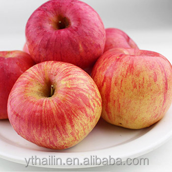 hot sale Chinese apple fresh Fuji apple fresh <strong>fruit</strong>
