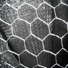 /product-detail/hexagonal-mesh-hexagonal-wire-netting-anping-hexagonal-mesh-chicken-mesh-60441959557.html