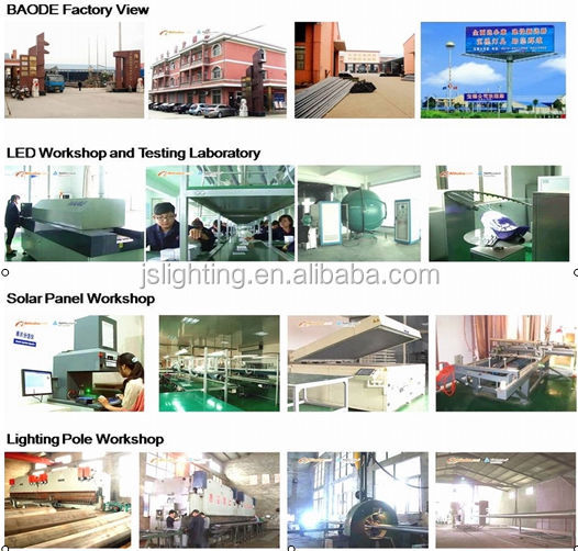 Pine Tree Tower Telecommunication Camouflaged Natural Branch cedar tree Tower Steel China Manufacturers