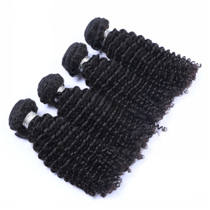 100% Mink Cuticle Aligned Raw Virgin Malaysian Hair Kinky Curly Funmi Human Hair