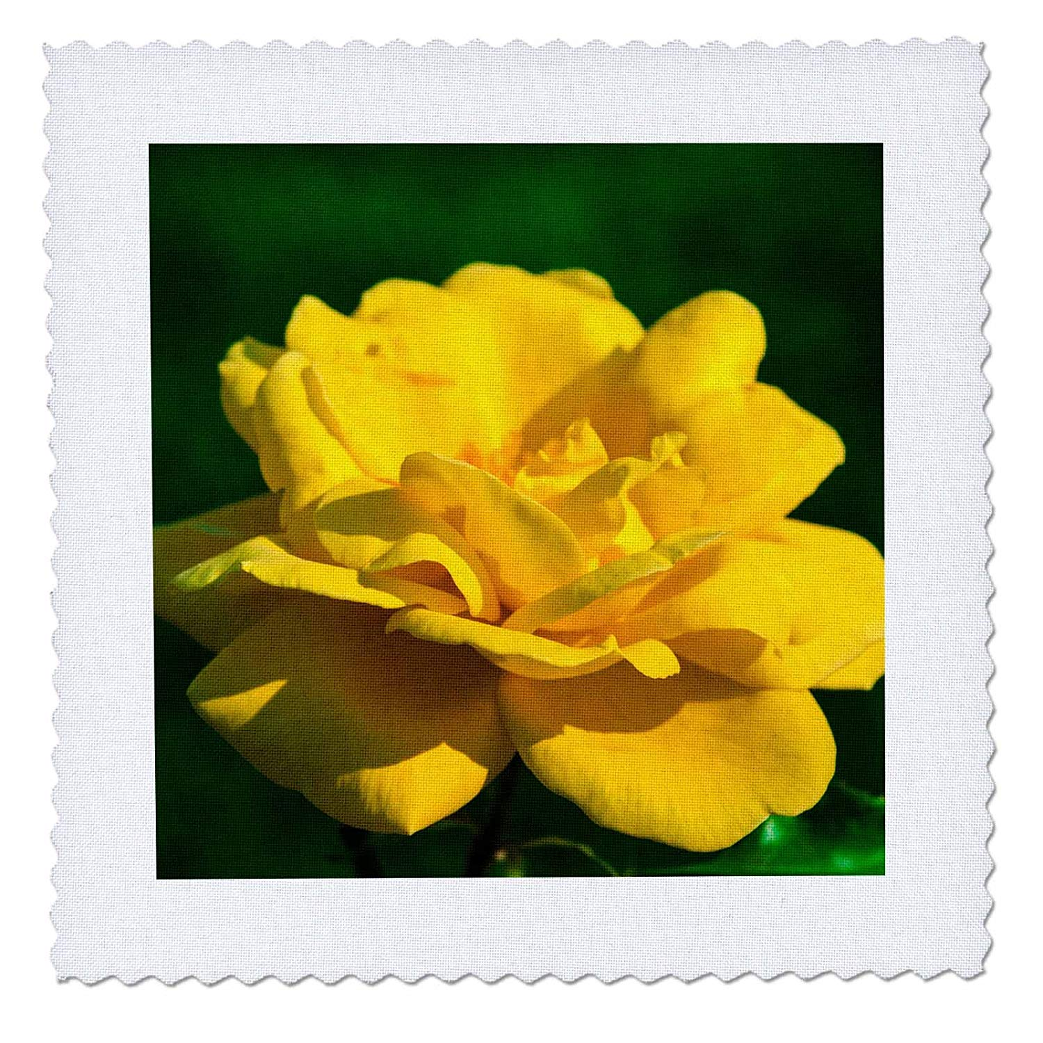Three Yellow Rose Flowers Against The Dark Green Background 3dRose Alexis Photography Flowers Rose T-Shirts