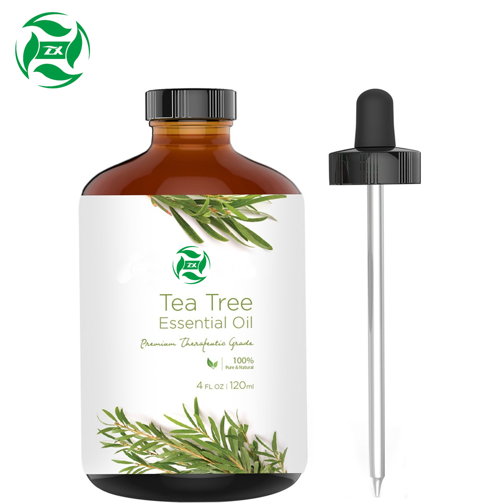 OEM/ODM Bulk 100% pure natural tea tree oil uses with free sample