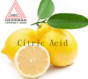 best Citric acid Food grade Made in China manufacturer