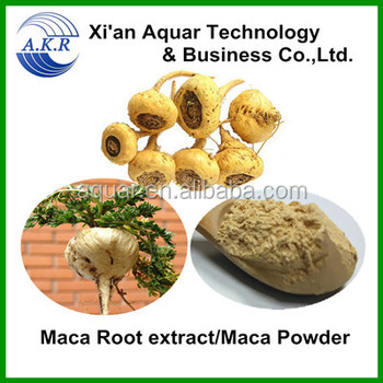 maca powder in herbal extract