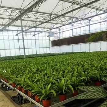 Hete verkoop groene huizen landbouw buy product on for Verkoop huizen