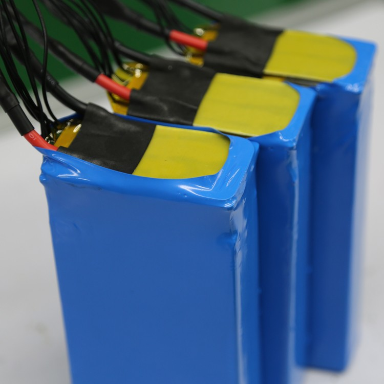 Li ion type 24 v 50ah lifepo4 battery pack buy li ion for Avantage batterie lithium ion