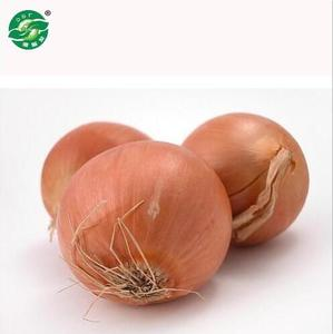 Chinese cheap good fresh onion for sale