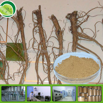 100% natural herbal extract - radix astragali