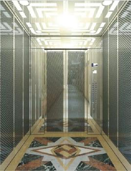 Cheap residential elevator lift small elevators for for Small elevators for homes