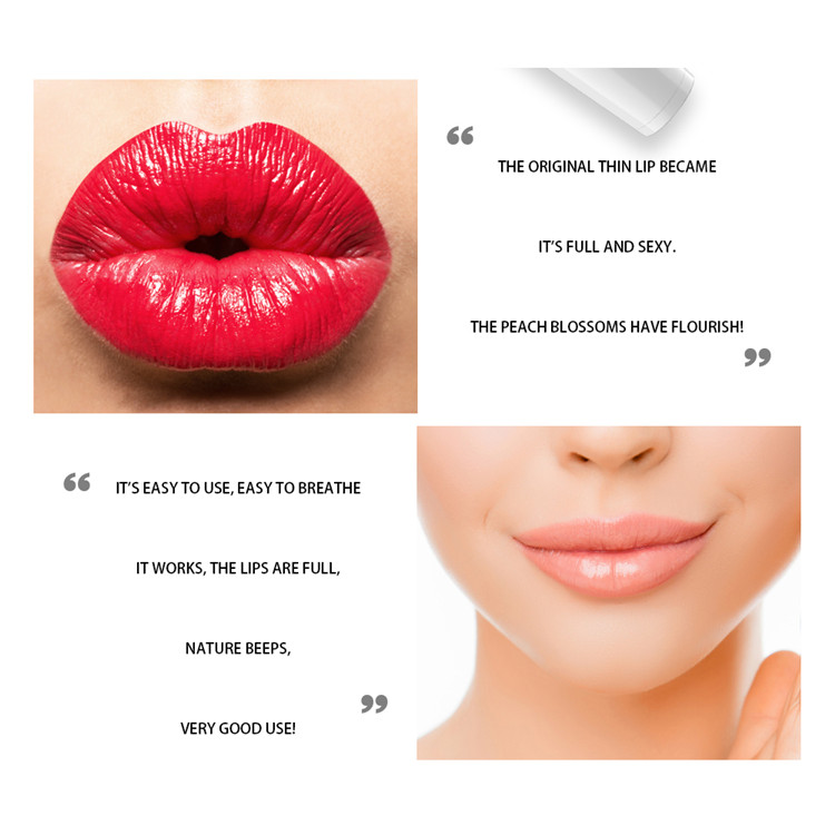 2018 new portable electric lip plumper free OEM logo