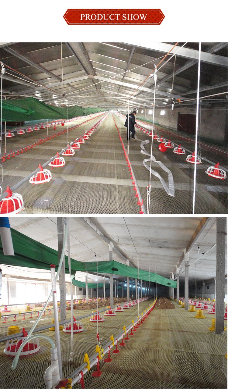 Broiler feed pan chicken feeding and drinking system in poultry farm