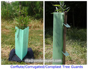 Light Green Triangle Tree Guards / Square Tree Protectors