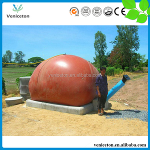 Veniceton China portable flexi biogas digester for sale kenya