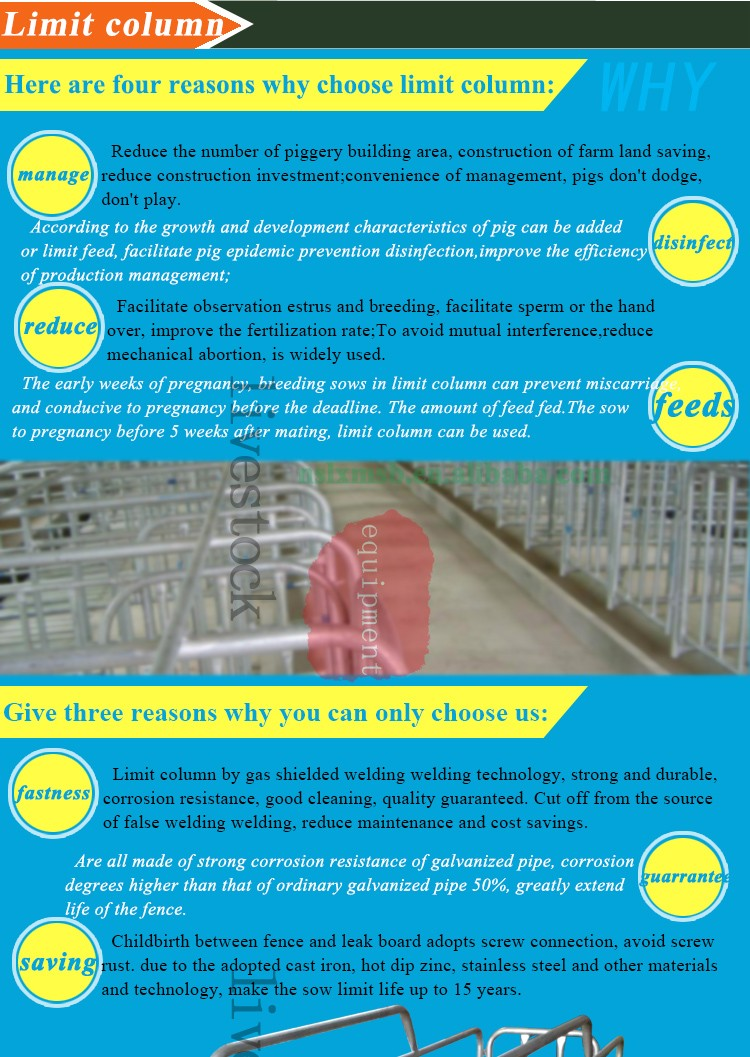2017Pig farm use strong type high quality farrowing crates for pigs