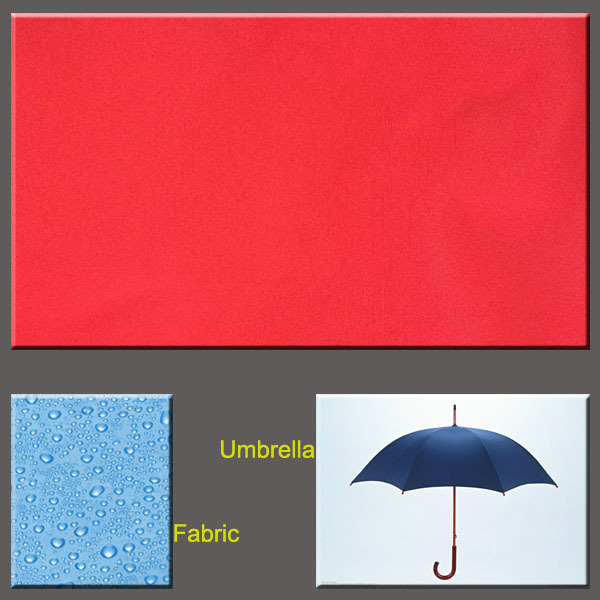 Waterproof Pongee Fabric/ Water Proof Pongee Fabric/ Waterproof Dewspo