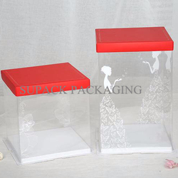 PET Plastic Packaging Box