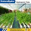 Factory Supply commercial greenhouse hydroponics equipment