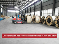 Xlpe Insulation Material And Pvc Jacket Armoured Cable - Buy Xlpe ...