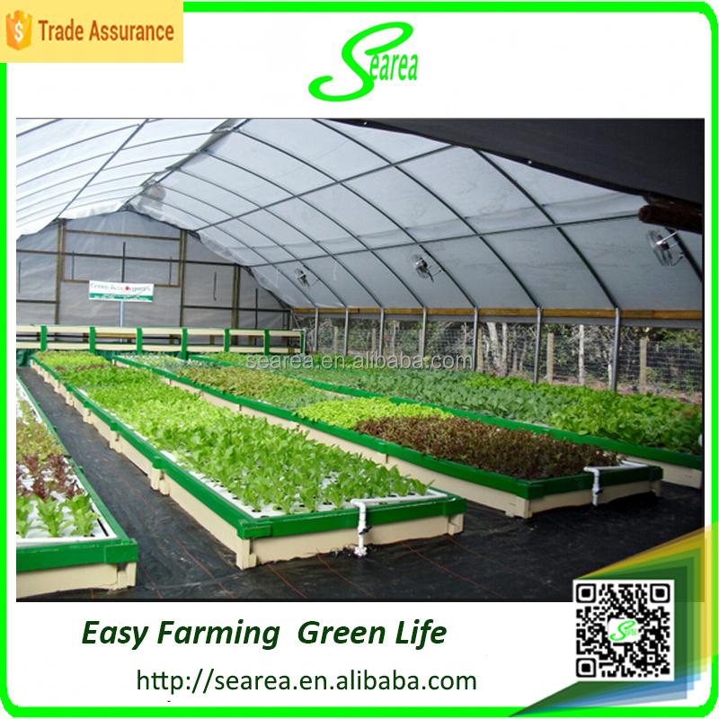 Pertanian sayuran rumah kaca untuk hidroponik & Pertanian sayuran rumah kaca untuk hidroponik-Multi-Rentang rumah ...