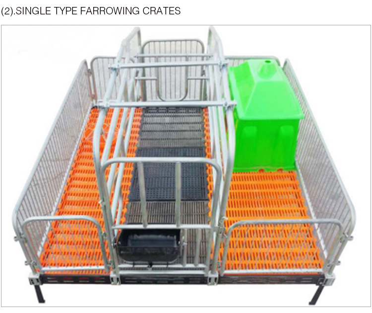 Pig Farming Equipment Swine Gestation Stall Farrowing Crates Pig Stall System