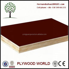 15mm 18mm Concrete Plywood Forms Board,Curved Plywood Concrete Forms