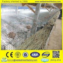 high quality wire mesh cage for mink price(direct factory)