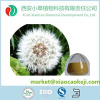 Pu Gong Ying gen/Herba Taraxaci Health Root Tea Dandelion Root powder